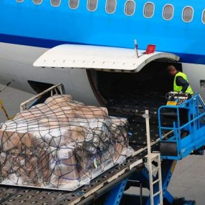 Air Cargo Security for Cargo Screening